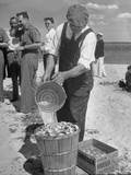 Sights of a Typical Summer at Cape Cod: Watering Clams to Aid the Steaming for Clambake Impressão fotográfica