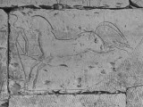 Carving of a Horse on Wall of Temple of Ramses II at Abydos Premium Photographic Print
