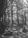 US Officers Having a Picnic in Forest Premium Photographic Print