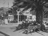 People Sitting on Benches at Railroad Crossing, with Signs, Signal Bell, and Palm Trees for Shade Premium Photographic Print
