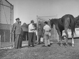 Horse Being Checked into Receiving Barn by Track Official and Police Premium Photographic Print