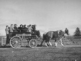 Horse and Buggy Party on Ohio Farm, This Wagon Used by Columbus Police Department Premium Photographic Print