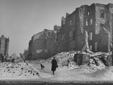 A Woman and Her Dog Walking Through the Ruins of the Old City Premium Photographic Print