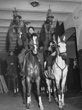 Fancy Horseback Riders Waiting Back Stage at the Circus Premium Photographic Print
