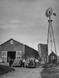 Farm Scenes of Farm Life in the Midwest Premium Photographic Print