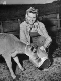 Patricia Colleen Altree Teaching a Calf How to Drink Milk from a Pail Premium Photographic Print