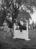 Governor Thomas E. Dewey's Son Thomas E. Dewey Jr. Having His Dog Jump a Hurdle During a Dog Show Premium Photographic Print