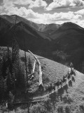Group of Vacationers Riding Horseback Along Mountain Trail in the Canadian Rockies Premium Photographic Print