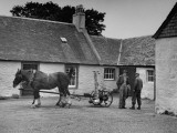 Men Standing Near Horse-Drawn Farming Equipment Premium Photographic Print