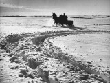 A Man Running His Horse Driven Wagon Through the Thick Snow Premium Photographic Print