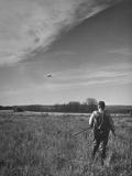 Pheasant Hunter Watching as Shot Bird Falls to the Ground Premium Photographic Print