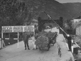 In the Trieste Region, a Horse Cart Full of Leaves Passing Through Checkpoint Premium Photographic Print