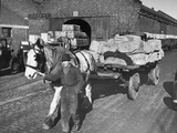 Horse-Drawn Cart of Rubber Being Taken Away on Gladstone Dock Premium Photographic Print