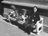 President Alfredo Baldomir, Sitting on a Bench at His Presidential Residence with His Dogs Premium Photographic Print