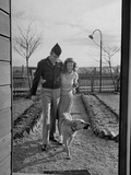 Soldier and Wife Walking Together with Dog Premium Photographic Print