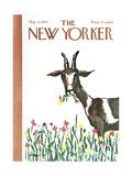 The New Yorker Cover - May 13, 1967 Impressão giclée por Warren Miller