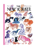 The New Yorker Cover - March 21, 1970 Regular Giclee Print by Kenneth Mahood