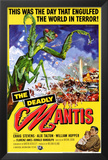The Deadly Mantis Print