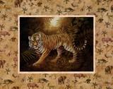 Safari, Tiger Print by T. C. Chiu
