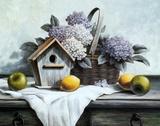 Birdhouse, Hydrangea, Apple Poster by T. C. Chiu