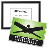 Cricket Green Sports Poster Print Photo