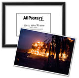 Palm Grove in Iraq (U.S. Detonated Explosions) Art Poster Print Posters
