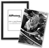 Dog in Motorcycle Sidecar Close-Up Archival Photo Poster Photo