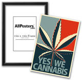 Yes We Cannabis Marijuana Poster Poster
