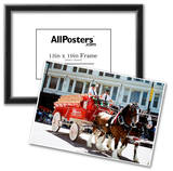 Budweiser Clydesdales Archival Photo Poster Photo
