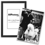 Poodle Dog Show 1977 Archival Photo Poster Posters
