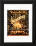 Nutmeg Prints