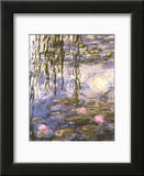 Waterlilies Prints