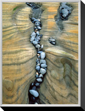 Rocks Caught in Sandstone Formations, Seal Rock Beach, Oregon, USA Framed Canvas Print by  Jaynes Gallery