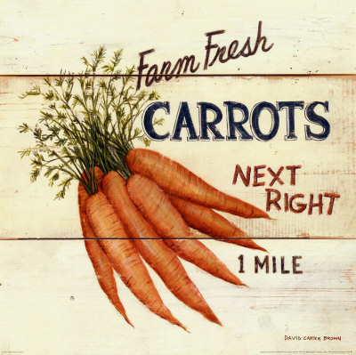 Farm Fresh Carrots Poster by David Carter Brown