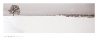 Winter Peace Art by  MacKinnon