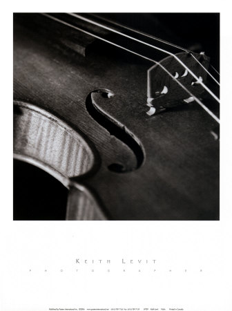 Violin Posters by Keith Levit