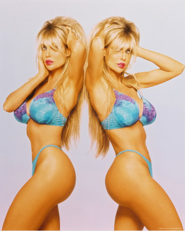 Barbi Twins Photo at AllPosters.