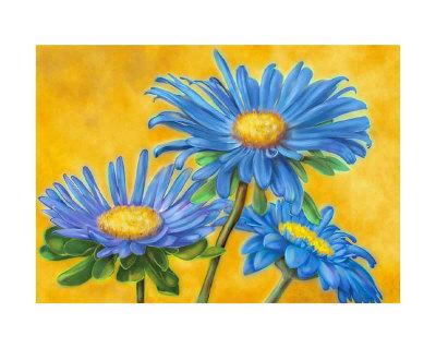 Blue Asters Poster by M. De Flaviis