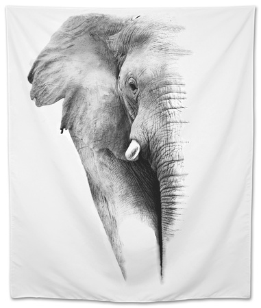 Artistic Black And White Elephant Tapestry by  Donvanstaden