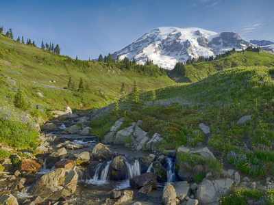 Wa, Mount Rainier National Park, Mount Rainier and Edith Creek Photographic Print by Jamie And Judy Wild