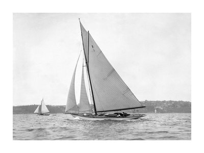 Victorian sloop on Sydney Harbour, 1930 Posters by  Anonymous