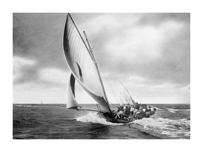Under sail, Sydney Harbour Print by  Anonymous