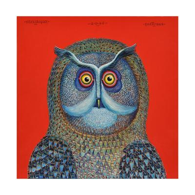 Long-Eared Owl, 2015 Giclee Print by Tamas Galambos