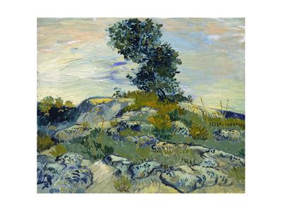 Rocks, 1888 Premium Giclee Print by Vincent van Gogh