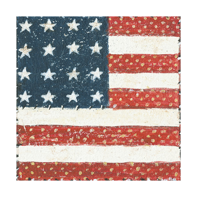Americana Quilt IV Posters by David Carter Brown