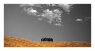 Toscana Landscape Stampa di  PhotoINC Studio