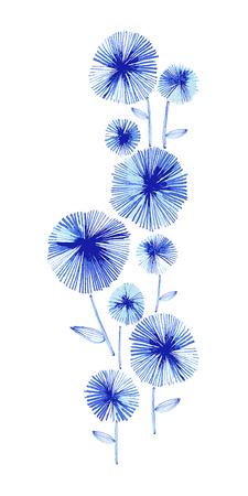 Flowering Aster Giclee Print