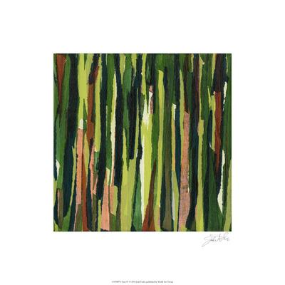Torn IV Limited Edition by Jodi Fuchs
