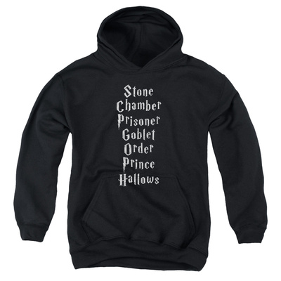 Youth Hoodie: Harry Potter- Short Titles Pullover Hoodie