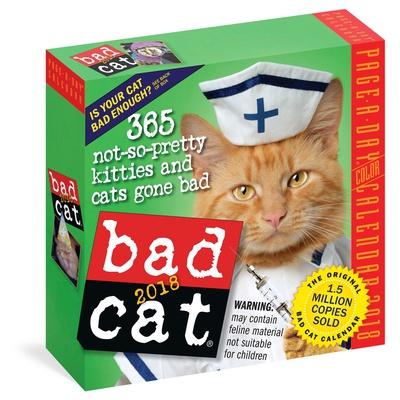 Bad Cat Color Page-A-Day - 2018 Boxed Calendar Calendari
